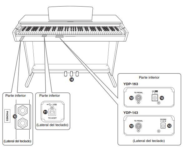 digital piano yamaha ydp conexiones